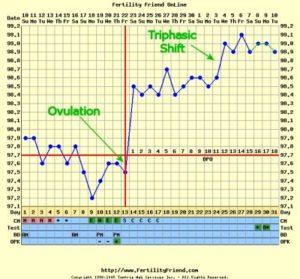 La temperatura basale parole e sapere - Sensazione di bagnato prima del ciclo ...