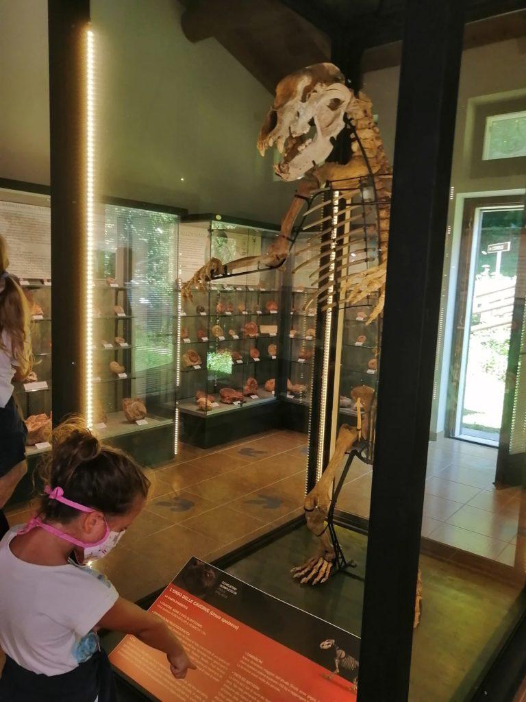 museo camposilvano